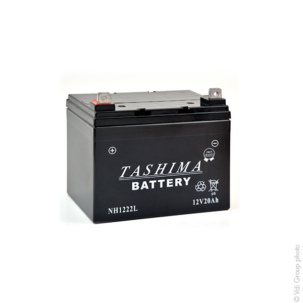 Tractor and Ride On Lawnmower Battery 12V 22Ah for Noma LX1-1646